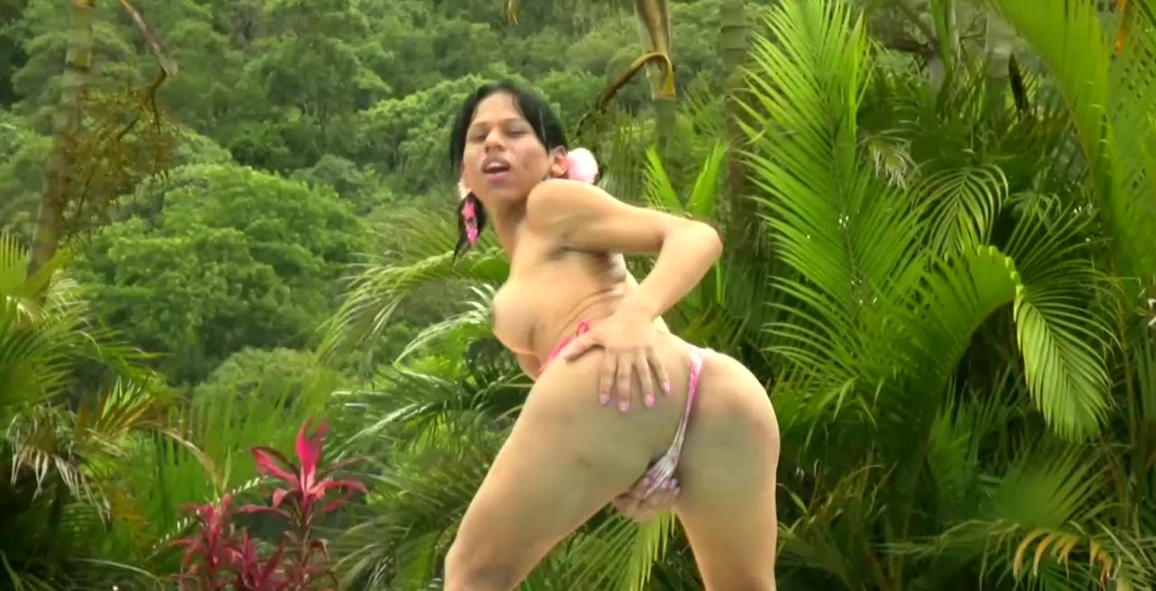 Tatooed ebony tgirl plays with good sized shemeat by pool