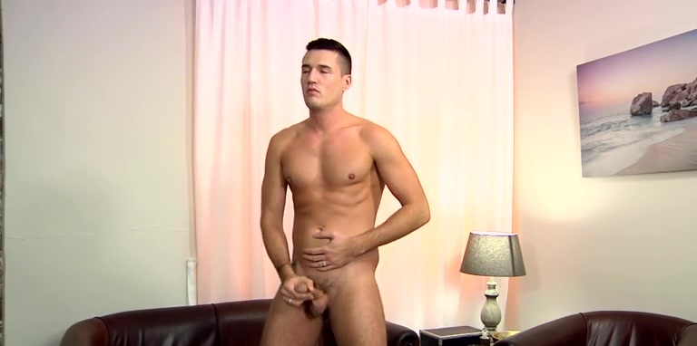 French Irish Hung Stud Theo! - Theo Ford